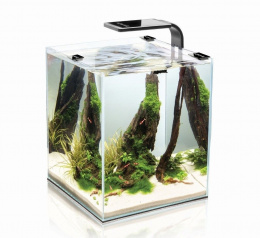 AQUAEL szyba z wycięciem SHRIMP SET SMART 20 BLACK